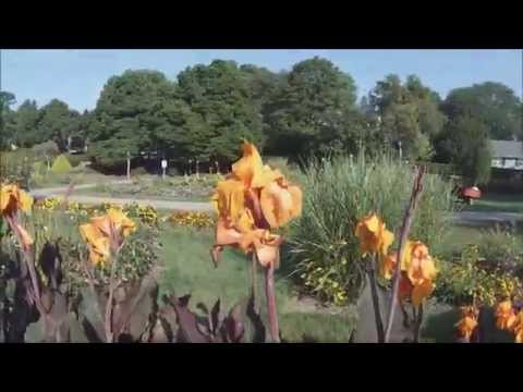 Rose Garden, Allentown, PA