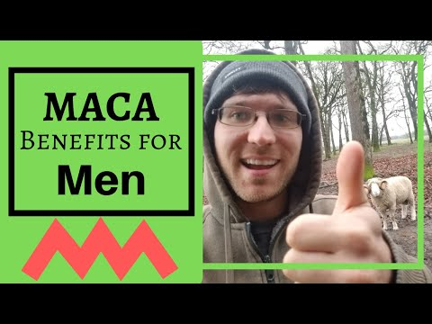 Maca Root Benefits for Men [2019] 😃