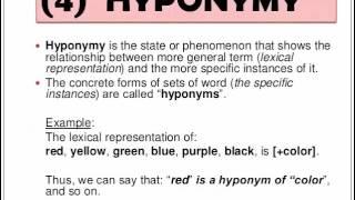 13. semantics (synonym, antonym, homonym, hyponym, polyseme, idioms)
