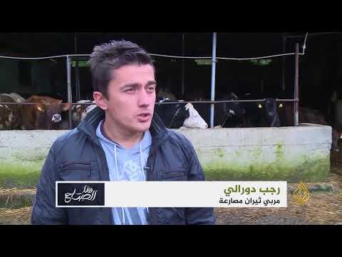 هذا الصباح-مصارعة الثيران بتركيا ثقافة لها تاريخ  - 11:21-2018 / 2 / 17
