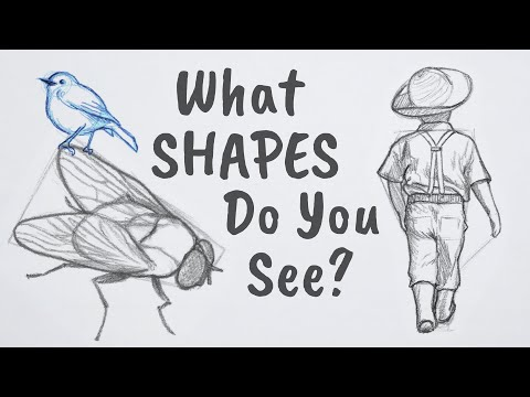 How to Draw ANYTHING Using Simple Shapes