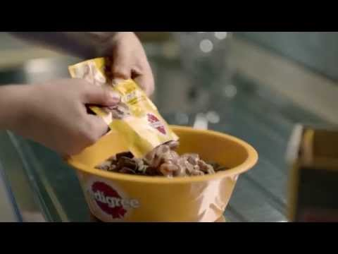 Introducing the new Pedigree Pouches - Mars | MedicAnimal UK