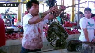 Anything found at bazaar  Roasted dogs & rats, sliced snakes sold on Indonesian market (DISTURBING)