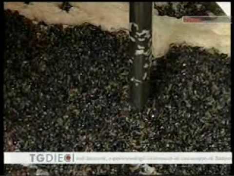 Sequestro bottiglie di vino