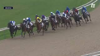 Vidéo de la course PMU PRIX DE FERGAND