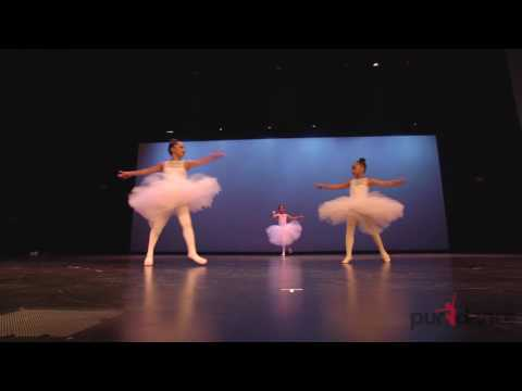 Dance Around the World 2016 Recital Recap