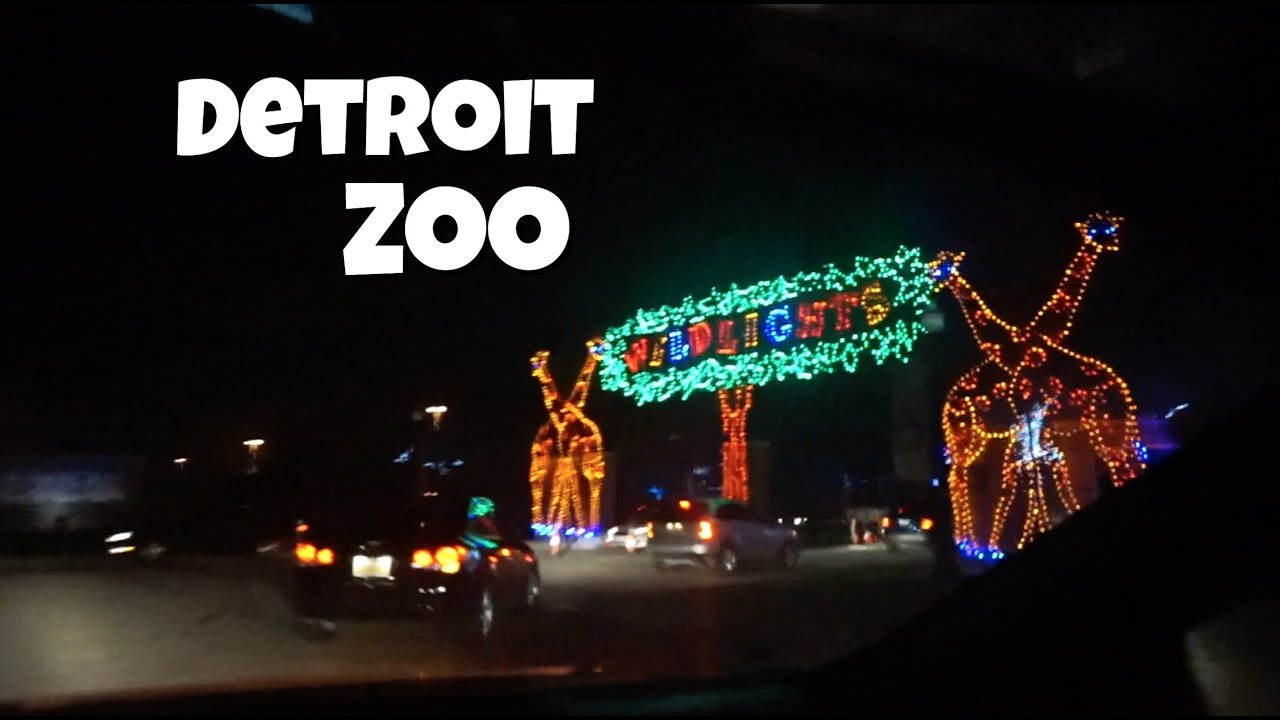 Detroit Zoo WIld Lights! - YouTube