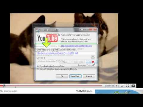 How To Download Youtube Video´s