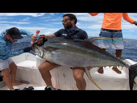 Fishing Monster Yellowfin Tuna In The Seychelles! Popping And Jigging Addicted!