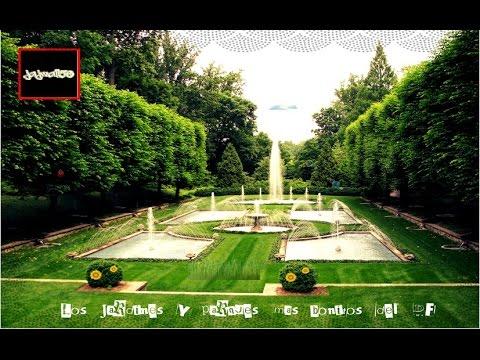Los jardines y parques mas bonitos del df youtube for Parques y jardines