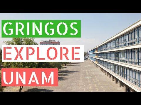 Gringos Explore The Largest University in Latin America (UNAM)