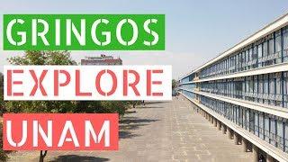 Gringos Explore The Largest University in Latin America (UNAM) thumbnail