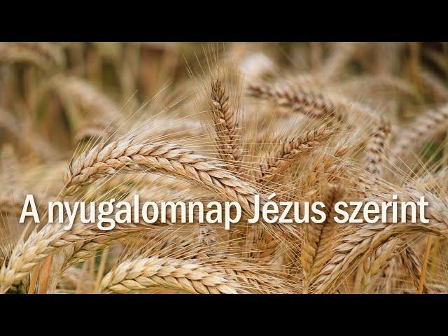 A nyugalomnap Jézus szerint - Márk 2:23-28 - 2021. 01. 17.