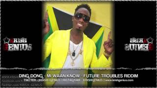 Ding Dong - Mi Waan Know [Future Troubles Riddim] October 2013