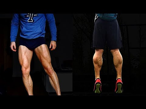 LEG WORKOUT Free Weights & Calisthenics (Quads/Glutes/Hams/Calves)