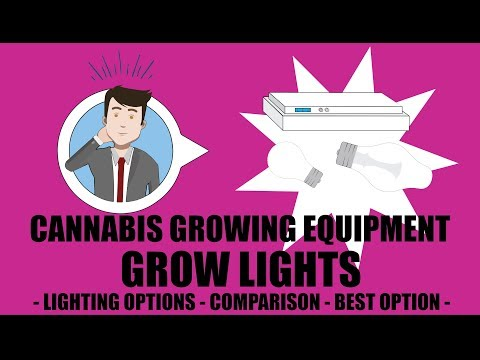 Weed Grow Operation Set Up - Grow Op Lights