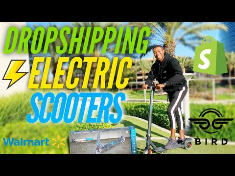 I Tried Dropshipping Electric Scooters on Shopify thumbnail
