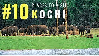 Amazing Places in Kochi | Tourist Places in Kochi | Tourism | #009