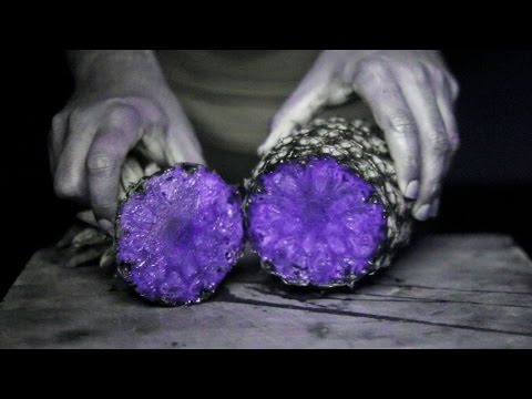 UV Camera Shows 10 Fruits in an Amazing New Way