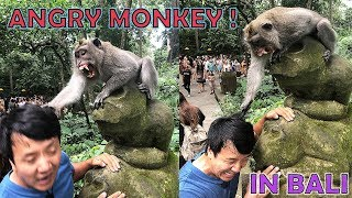 An EVIL MONKEY Attacked Me!