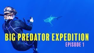 EPISODE 1: FACE OF WITH 7 BULL SHARKS 😱🦈