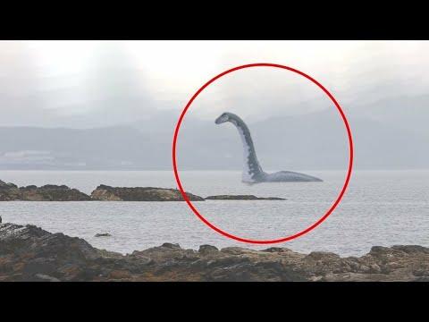 5 Loch Ness Cudovista Uhvacenih Kamerom U Stvarnom Zivotu