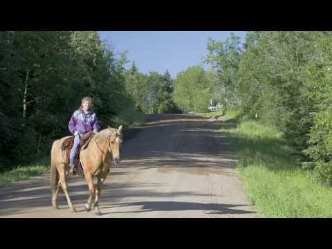 Lacombe County Environmental Management System - Leading from within