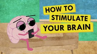 How to Give Y๐ur Brain the Stimulation It Needs