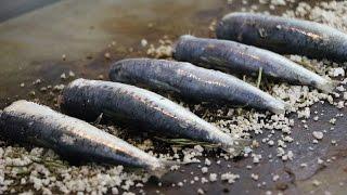 Sardines au gros sel de Guérande