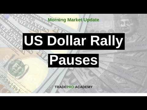 US Dollar Rally Pauses, Sending Oil Prices and the Stock Market Higher Overnight