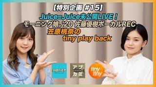 「ハロ!ステ」「アプカミ 」「tiny tiny」3番組合同の特別番組!Juice=Juice LIVE TOUR 2019~Con Amor J=J DAY SPECIAL~から1曲お届け!モーニング娘。