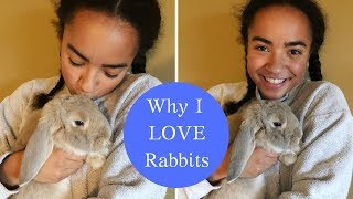 Gambar cover Why I love Rabbits & Collab with Asher's Adventures and Lilac the Lop!