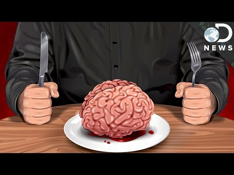 Is Cannibalism A Natural Human Behavior?