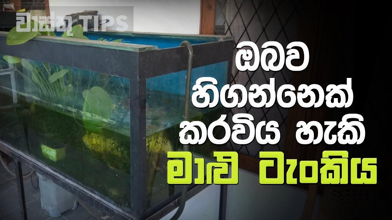 නිවසේ ඇති මාළු ටැංකියට ඔබව හිගන්නෙක් කල හැකි බව ඔබ දන්නවද..?   Vastu Tips for Fish Aquarium in Home