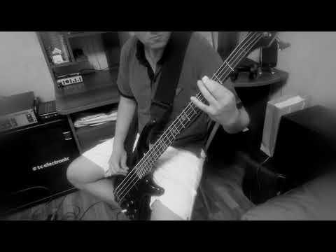 down - bury me in smoke (bass cover)