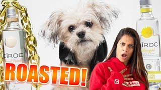My Dog Roasts Me! (CHALLENGE)