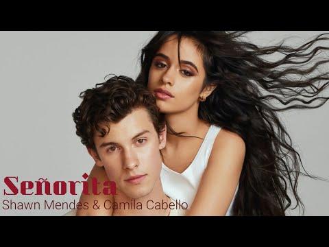 Shawn Mendes & Camila Cabello – Señorita  Lirik + Terjemah  Lagu Terbaru 2019