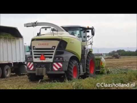 Claas jaguar 980/ New Claas Jaguar 980 (type498) chopping in Californië usa.