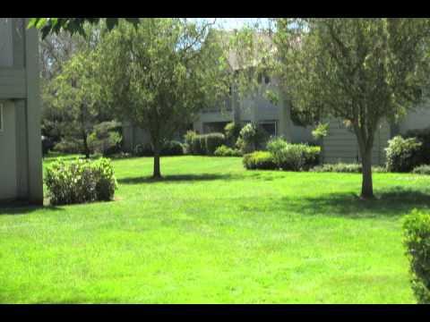 Landscape Contractors Eugene  | Commercial Landscaping | Lawn Maintenance