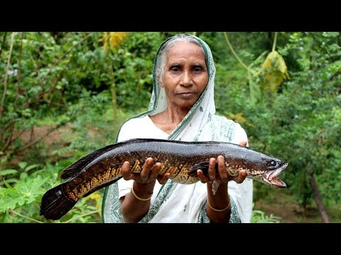 Big Fish Recipe Cooking by our Grandma | Traditional Big Sole Fish Recipes | Village Food