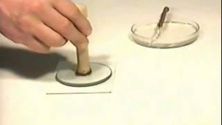 видео капиллярные колонки