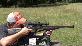 Ruger 1022 sight in and plinking