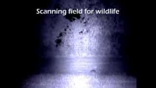 nite site spotter first field test of this new hand held night vision device