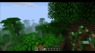 Video TEST #3  Minecraft epic fail jump