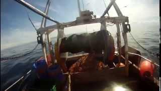 Prawn trawling 2015