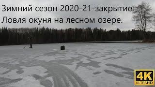 Закрытие зимнего сезона 2020 2021 Рыбалка на лесном озере Ловля окуня на зимнюю блесну