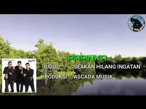 TERBARU PAPINKA 2018 ~ SEAKAN HILANG INGATAN