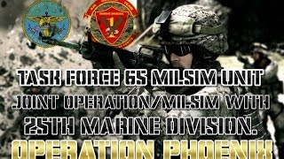 Task Force 65 Joint Operation/Milsim with 25th Marine Division. Operation Phoenix