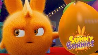 SUNNY BUNNIES | BUNNIES PLAY TAG | | Funny Cartoons For Children