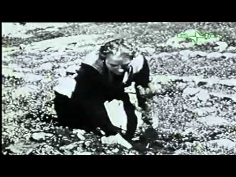 Ben Gurion - La Nascita Dello Stato Di Israele